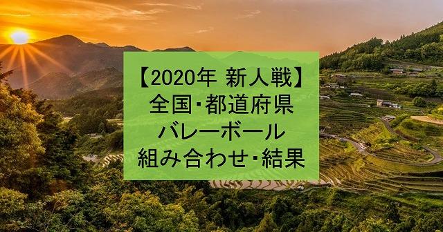 【2020年 新人戦】都道府県・高体連、高校新人バレーボール大会組み合わせ、結果まとめ