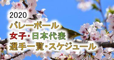 【2020年度】女子バレー日本代表メンバー、選手一覧!東京オリンピック、年間スケジュールも