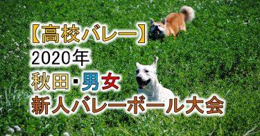 【2020年 高体連】秋田・高校新人バレーボール大会(男女)組合せ、結果