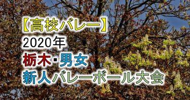 【2020年 高体連】栃木・高校新人バレーボール大会(男女)組合せ、結果