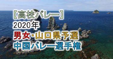 【2020年 高体連】山口県予選・中国高校バレー選手権大会(男女)組合せ、結果