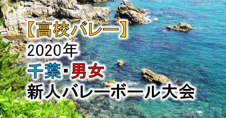 【2020年 高体連】千葉・高校新人バレーボール大会(男女)組合せ、結果
