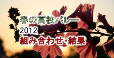 【2012 春高バレー】トーナメント組み合わせと結果一覧、優秀選手
