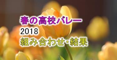 【2018 春高バレー】トーナメント組み合わせと結果一覧、優秀選手