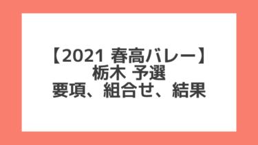 栃木予選|2021春高バレー 全日本高校選手権大会 結果、組合せ、大会要項