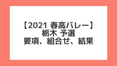 栃木 2021春高予選|第73回全日本バレー高校選手権 結果、組合せ、大会要項