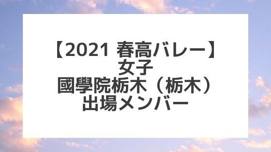 【2021春高バレー】國學院栃木(栃木女子代表)メンバー紹介!