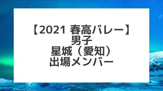 【2021春高バレー】星城(愛知男子代表)メンバー紹介!