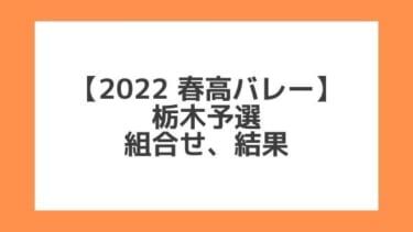 栃木 2022春高予選|第74回全日本バレー高校選手権 結果、組合せ、大会要項